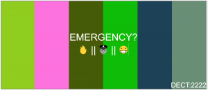 Emergency-dect.png
